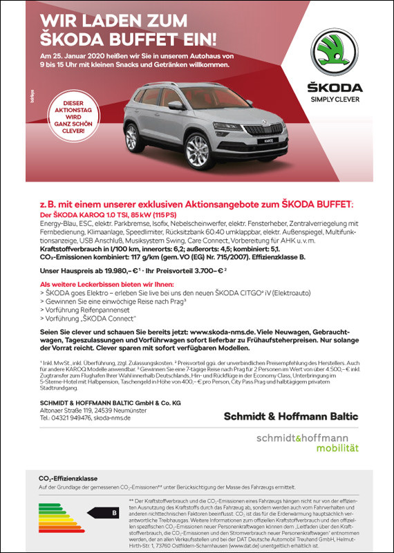 Skoda Buffet Baltic |